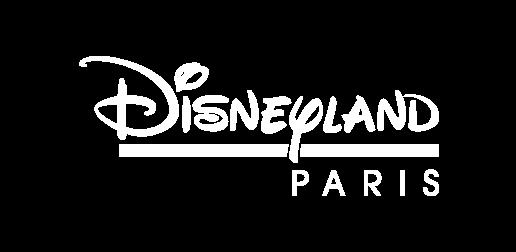 Disneyland Paris 1 jour / 2 parcs
